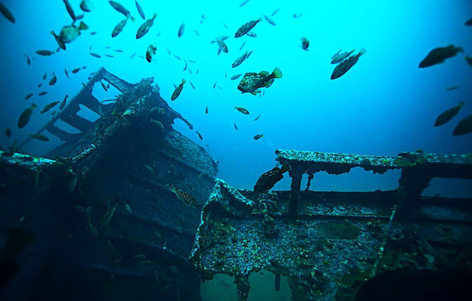 кошка индианаполис фото затонувшего корабля это