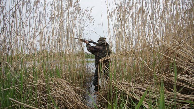 Вниманию охотников Кировского района