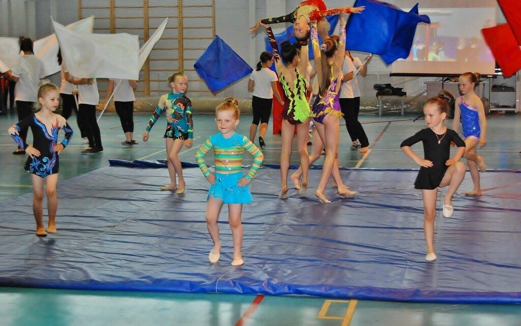 12-14 ноября в г. Калуга прошло первенство Калужской области по художественной гимнастике